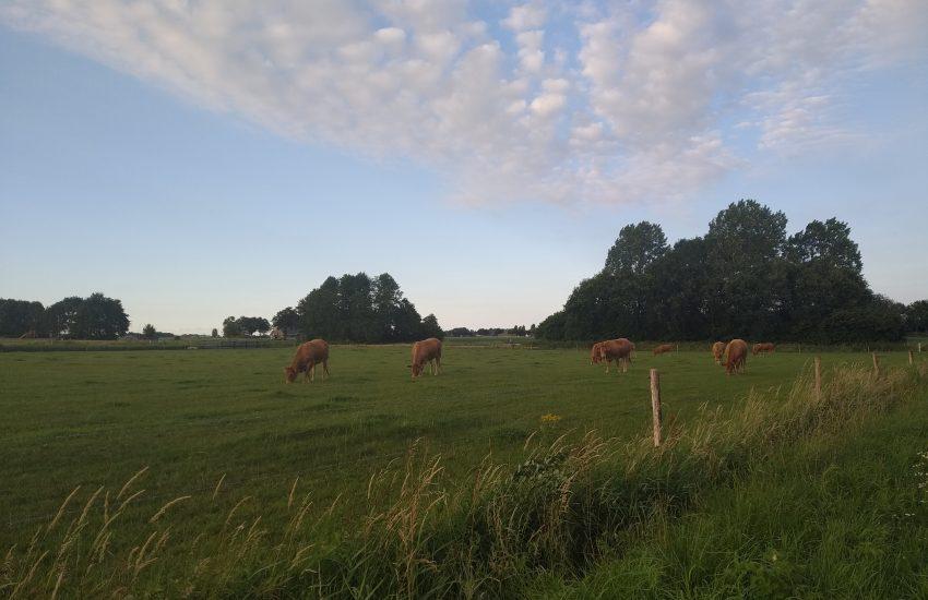 Vooruitgang gaat niet om snelheid, maar om richting | GeldGewoontes.nl
